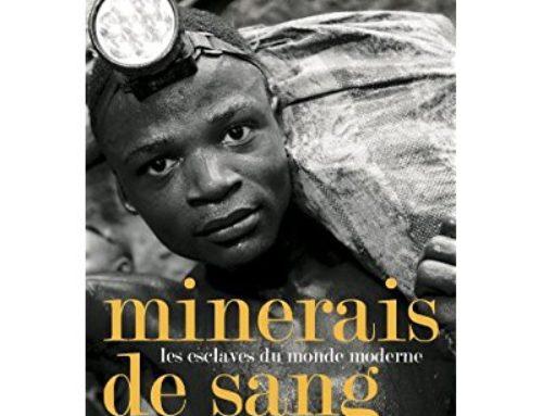 Etat des lieux – Minerais du Sang et Co.